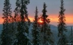 Murmansk65 аватар