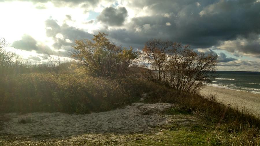 Погода! Прекрасная, ужасная, хорошая. (2)-134052