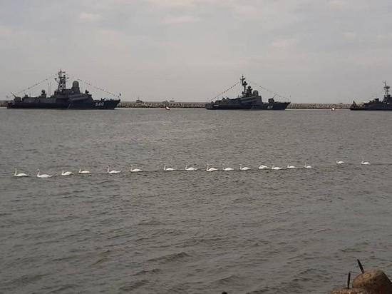 День ВМФ-132030