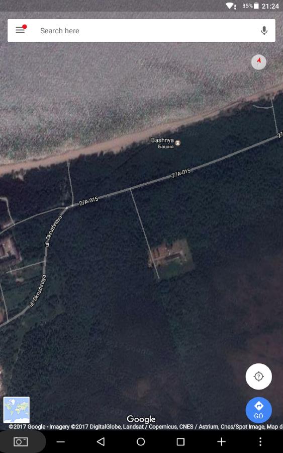 Что за объект в лесу?-106371
