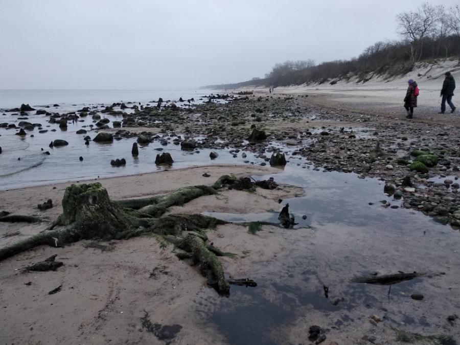 Пляжи Зеленоградска-134252