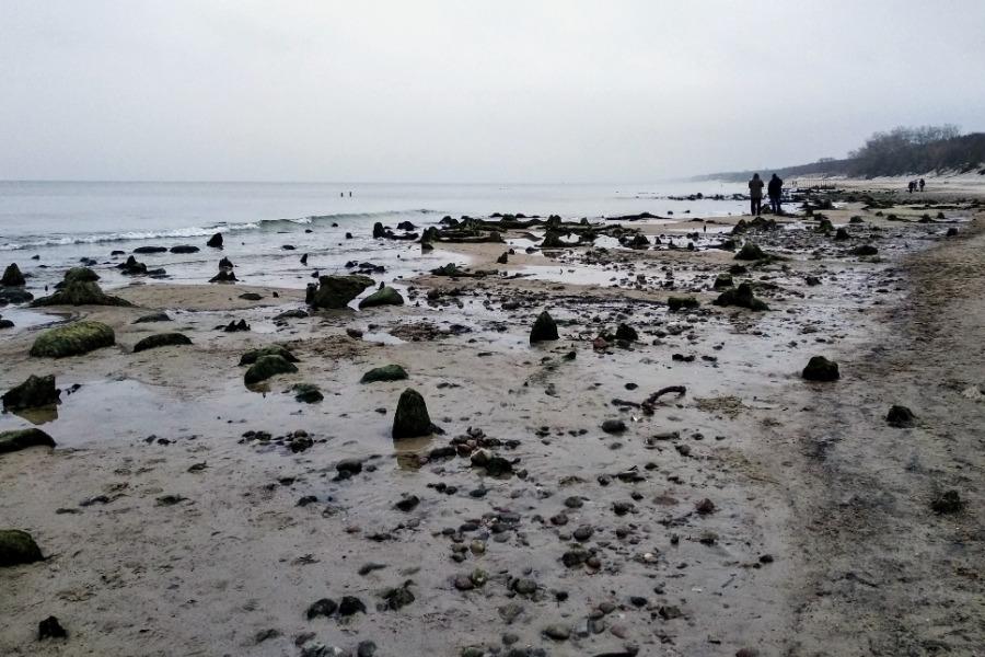 Пляжи Зеленоградска-134253