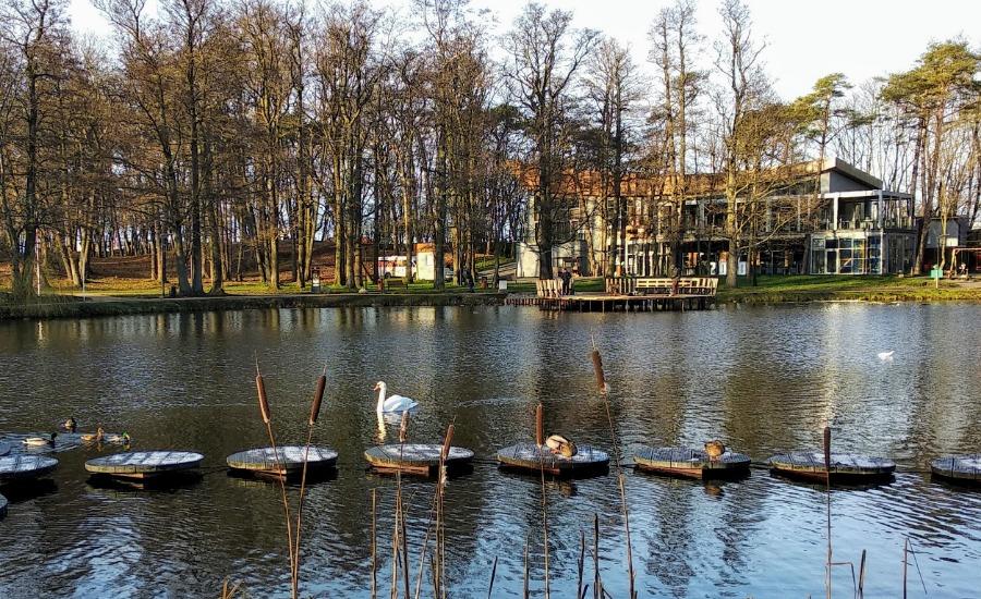 Зеленоградский парк - 2-134666