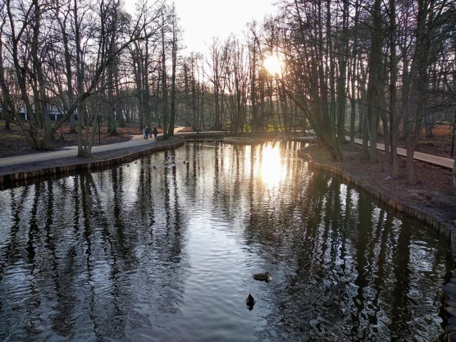 Зеленоградский парк - 2-134736
