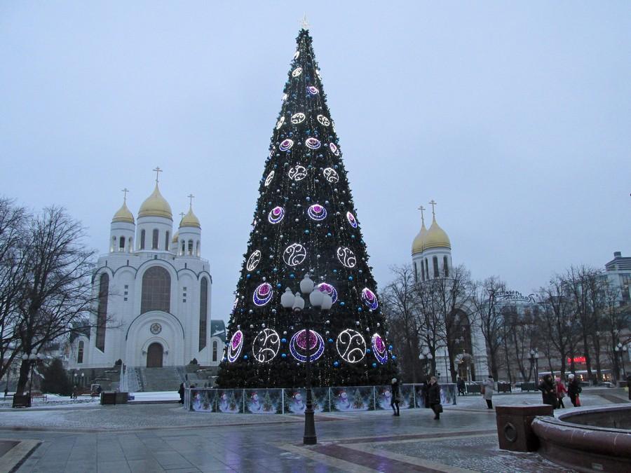 Новогодние ёлки в городах и домах-124979