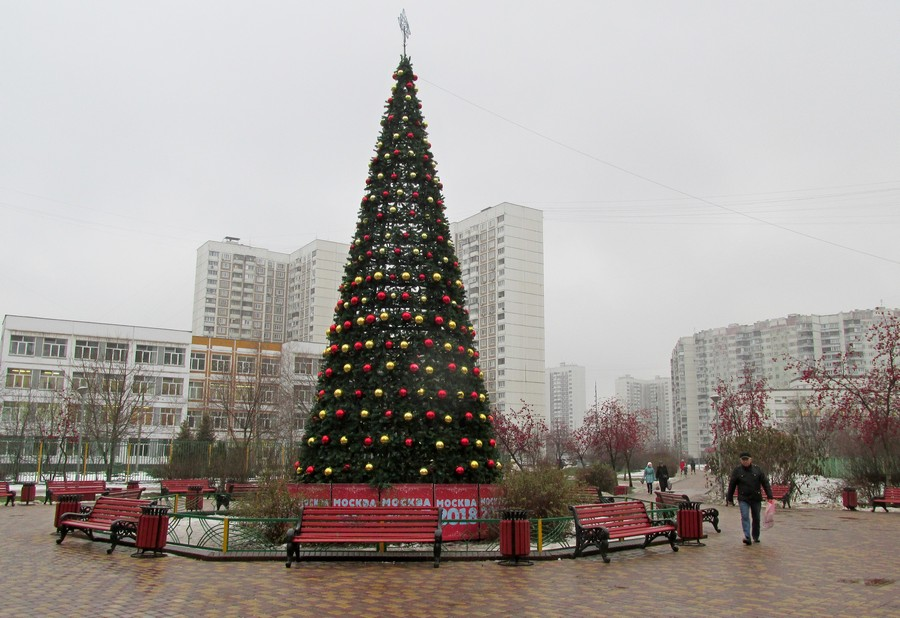 Новогодние ёлки в городах и домах-113588