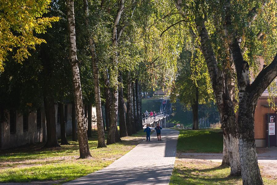 Город Правдинск (Фридланд)-57816