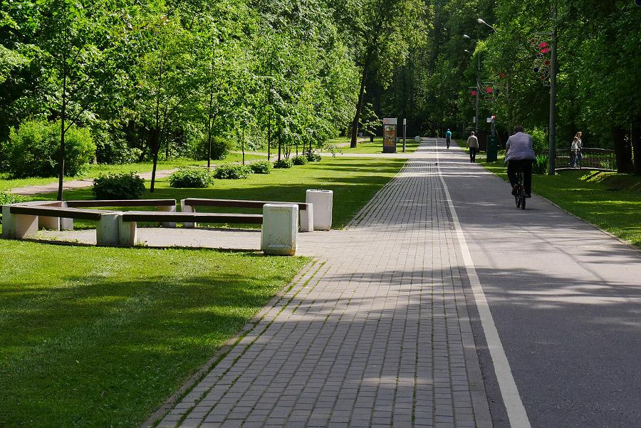 В парке Зеленоградска появились пластмассовые грибы (13.05.19)-131079